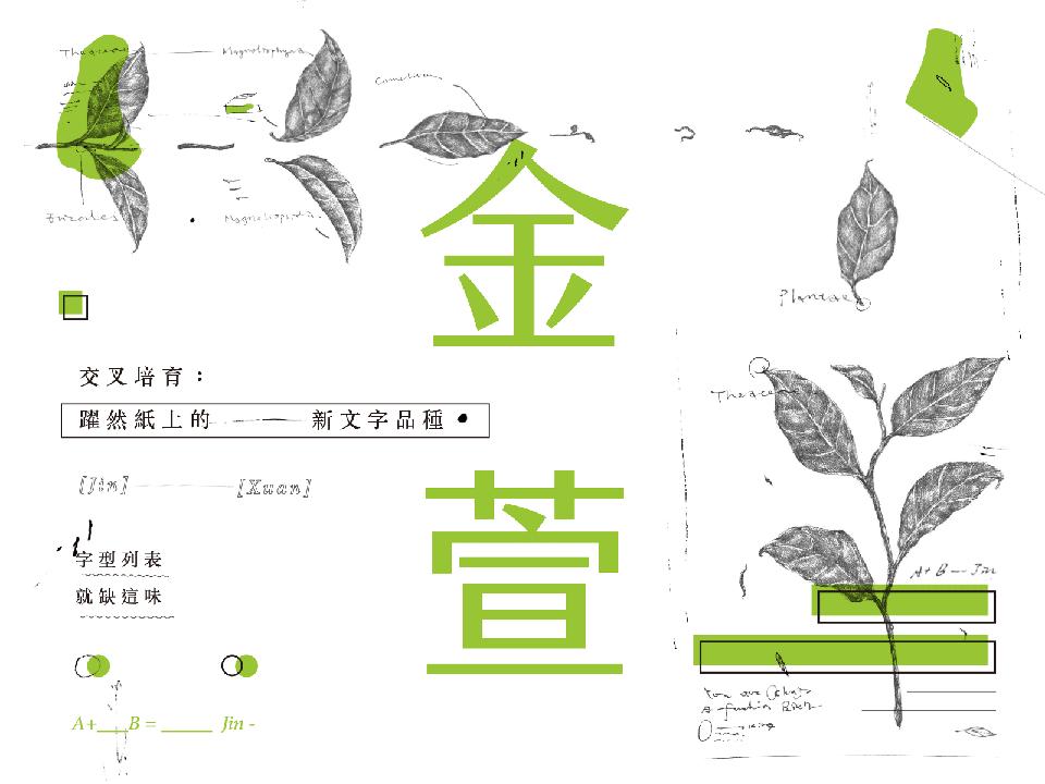 王金平宣傳金萱體 籲重視台灣字型產業