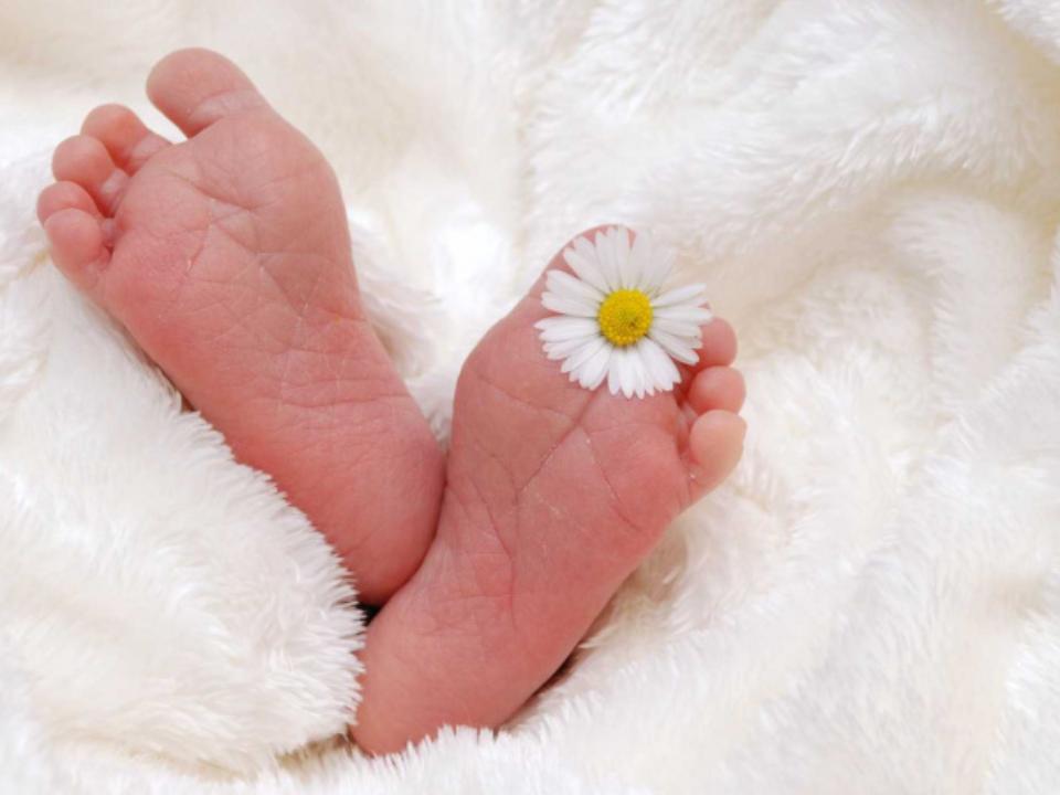 出生1月嬰「肛門長菜花」!醫想破頭才知「驚人真相」