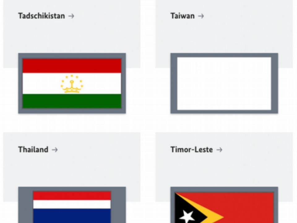 台灣國旗官網消失 德國專家:危險訊號