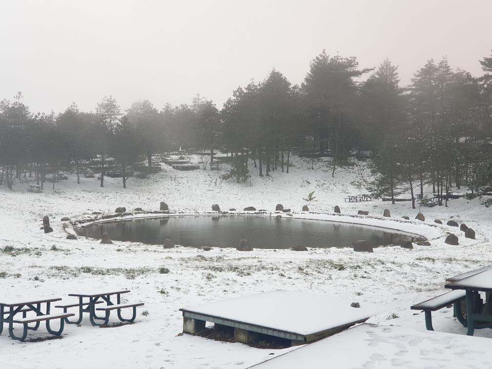 合歡山梨山下大雪!高山路段夜間封閉「限掛雪鏈」