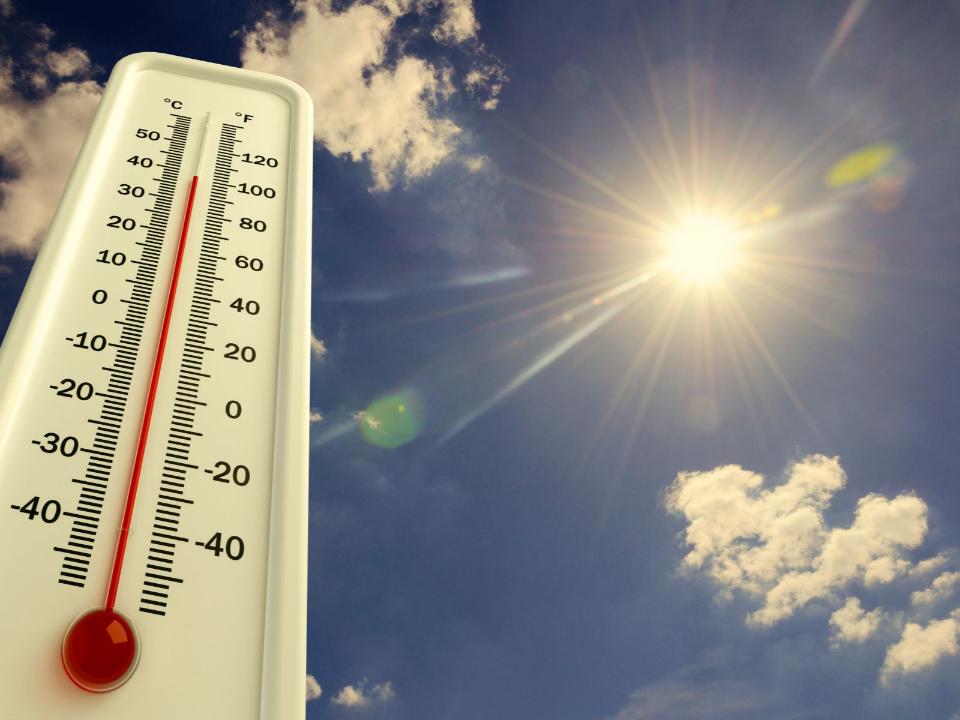 極端高溫燒番薯「明天…更熱」電量飆升50萬瓩供電恐吃緊