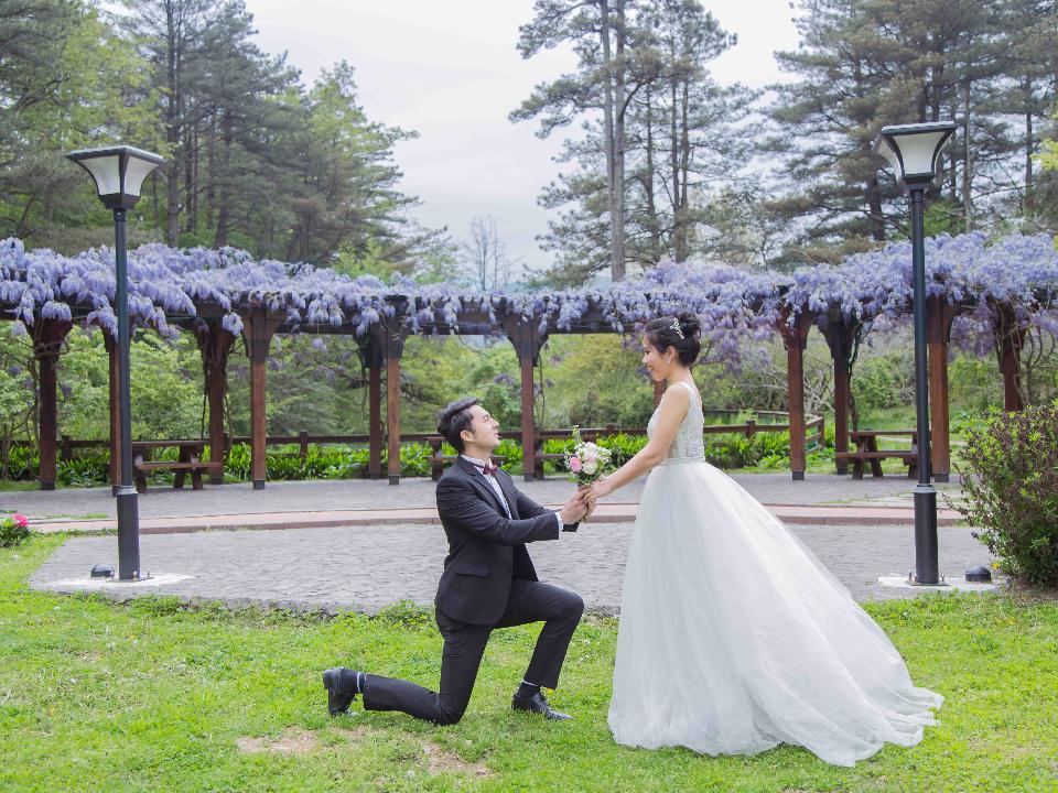 疫情破冰!中橫開通60周年 觀光局推梨山選12對佳偶開辦雲端婚禮