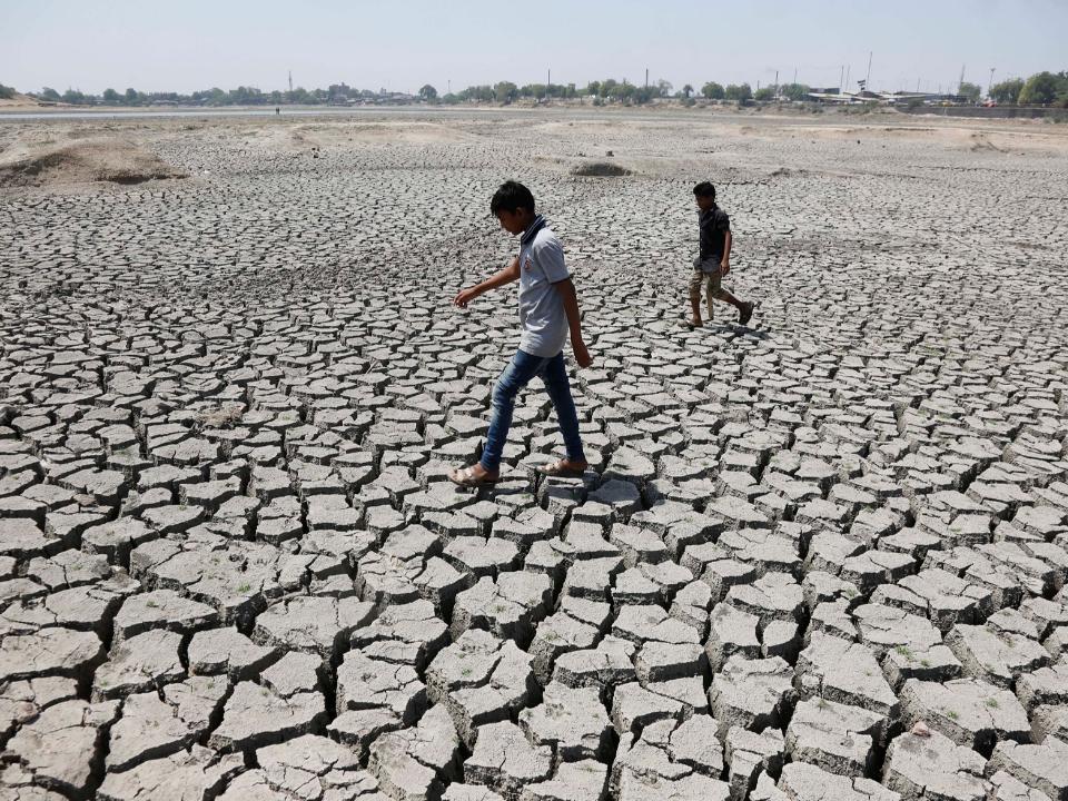 地球步入大滅絕時期:高溫逼近51度 這國家未來恐「無法住人」